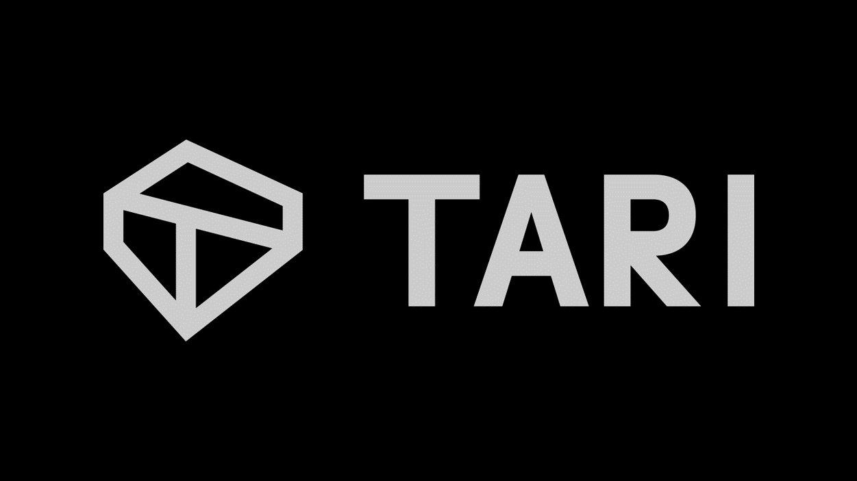 Что такое Tari. Протокол с информацией о правах собственности
